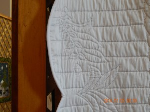 Close-up Whole Cloth Quilt